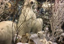 kerstmarkt bad iburg